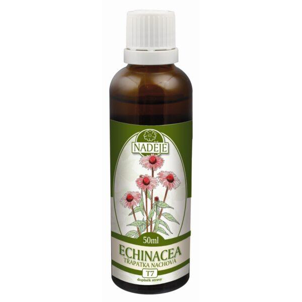 Echinacea - tinktura z byliny 50ml 1